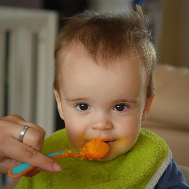 stabmixer für baby brei